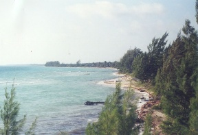 Additional photo for property listing at Kemps Bay Waterfront Property Andros, Багамские Острова