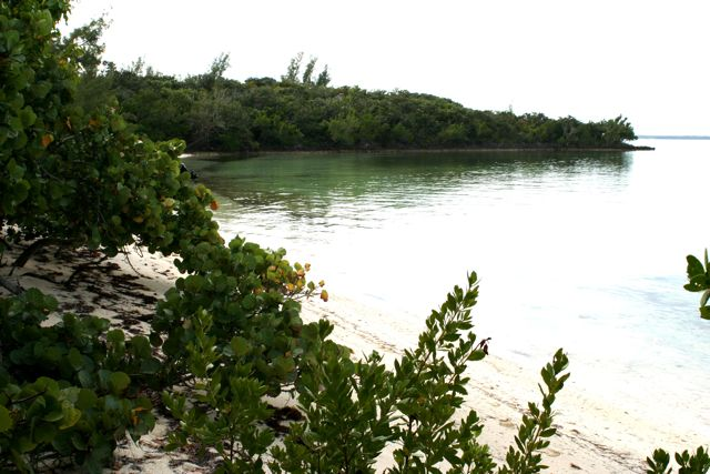 Additional photo for property listing at The Summer Estate Tract  Inner White Sound Abaco, Bahamas