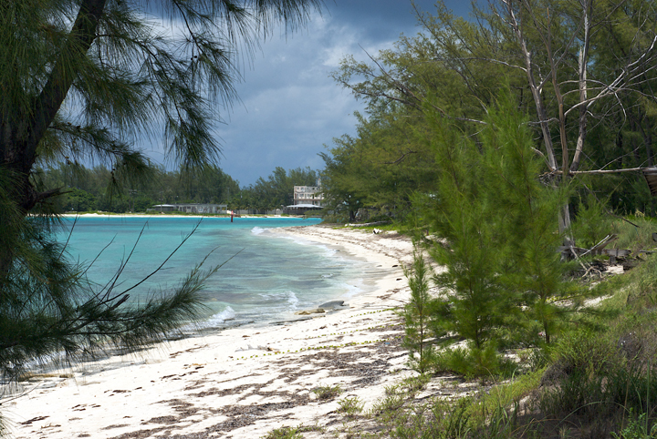 Additional photo for property listing at Beachfront Lot at Sampson Ridge Bimini, バハマ
