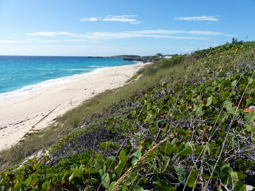 Additional photo for property listing at Ocean Ridge Beachfront Lot Exumas, Bahama Eilanden