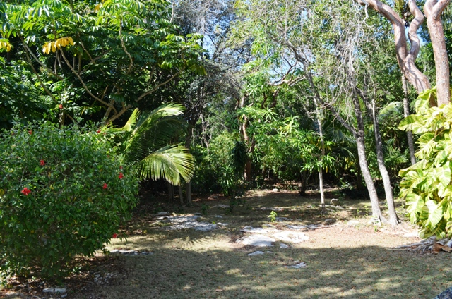 Additional photo for property listing at Home in Camperdown on one and a quarter acre of land Nassau New Providence And Vicinity