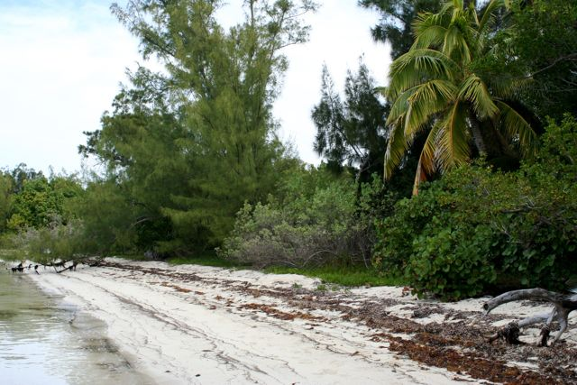 Additional photo for property listing at The Summer Estate Tract  Inner White Sound Abaco, Bahama Eilanden