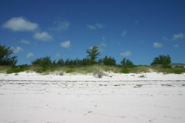 Additional photo for property listing at Island Estate Lot Eleuthera, バハマ