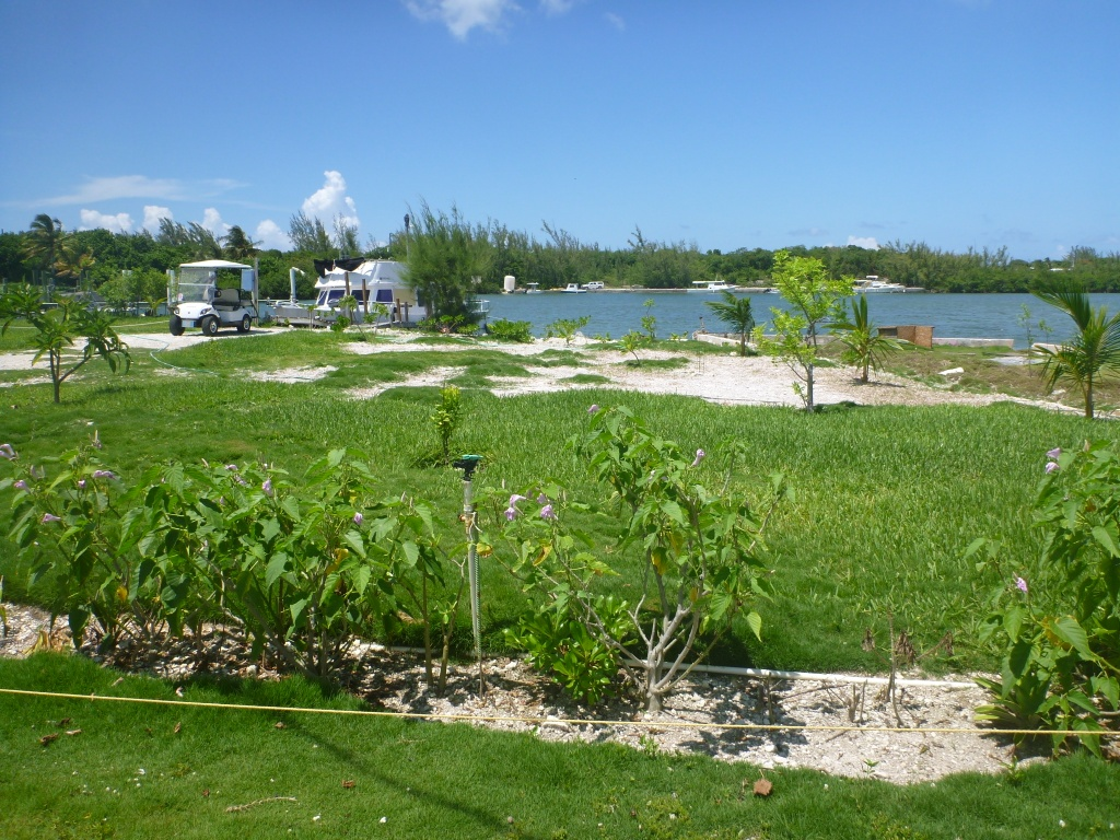 Additional photo for property listing at Waterfront Russel Island Eleuthera, Багамские Острова
