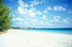 Additional photo for property listing at Ocean Pearl Resort In High Rock High Rock, Grand Bahama, Bahamas