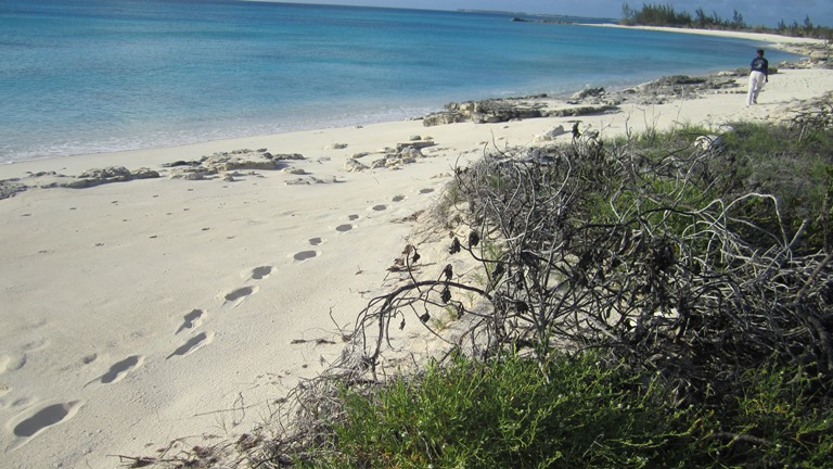Additional photo for property listing at Beachfront lot in San Salvador with all utilities - MLS 27416 San Salvador, Bahamas