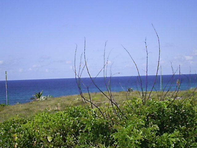 Additional photo for property listing at A Development Opportunity Long Island, Bahamas