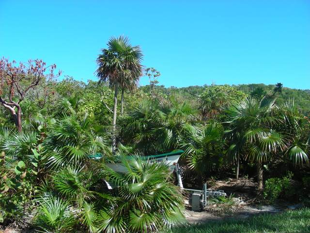 Additional photo for property listing at Four beachfront cottages in Southern Cat Island Cat Island, バハマ