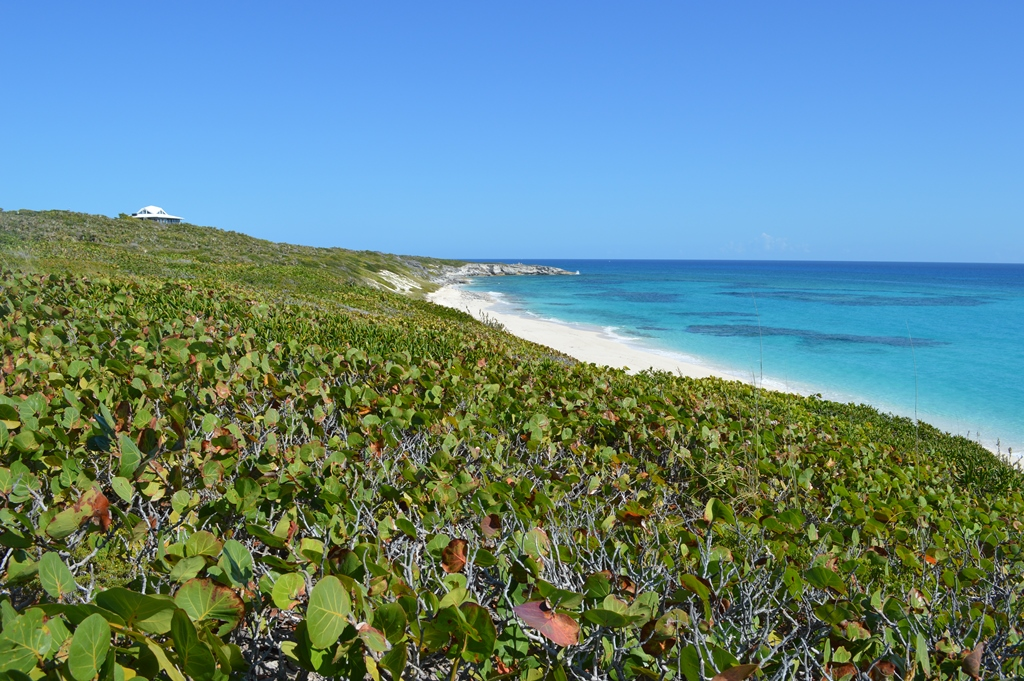 Additional photo for property listing at Ocean Ridge Beachfront Lot Exumas, Bahamalar