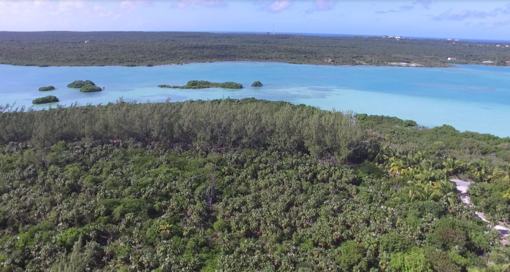 Additional photo for property listing at Sea-to-Sea Beachfront Lot on Windermere Island (MLS 28415) Eleuthera, Bahamas