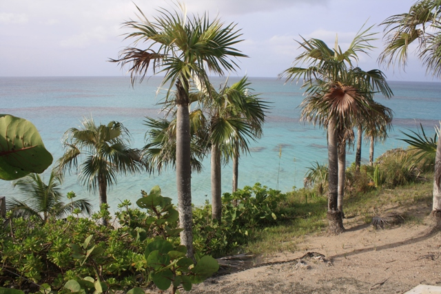 Additional photo for property listing at Acres of Peaceful Paradise Palmetto Point Banks Road MLS 18688 Eleuthera, バハマ