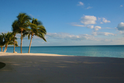 Additional photo for property listing at Beachfront Custom Home Lots バハマ