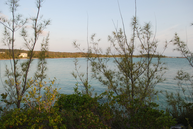 Additional photo for property listing at Third Cay Private Island, near Harbour Island - MLS 29474 Harbour Island, 바하마