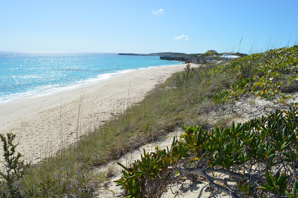 Additional photo for property listing at Ocean Ridge Beachfront Lot Exumas, バハマ