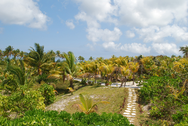 Additional photo for property listing at Tir Na Nog Private Estate Eleuthera, Bahamas
