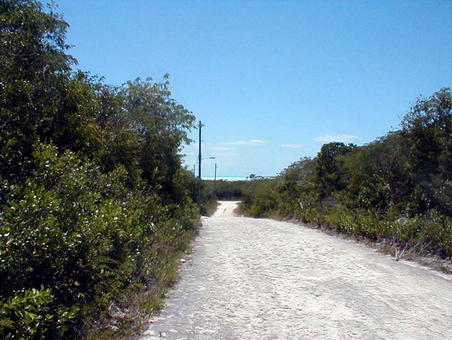 Additional photo for property listing at Bahama Sound 11, Exuma Lots for the perfect investment Bahama Sound, Exuma, Bahamas