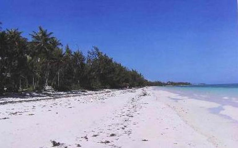 Additional photo for property listing at Beach cottage with development acreage Andros, バハマ