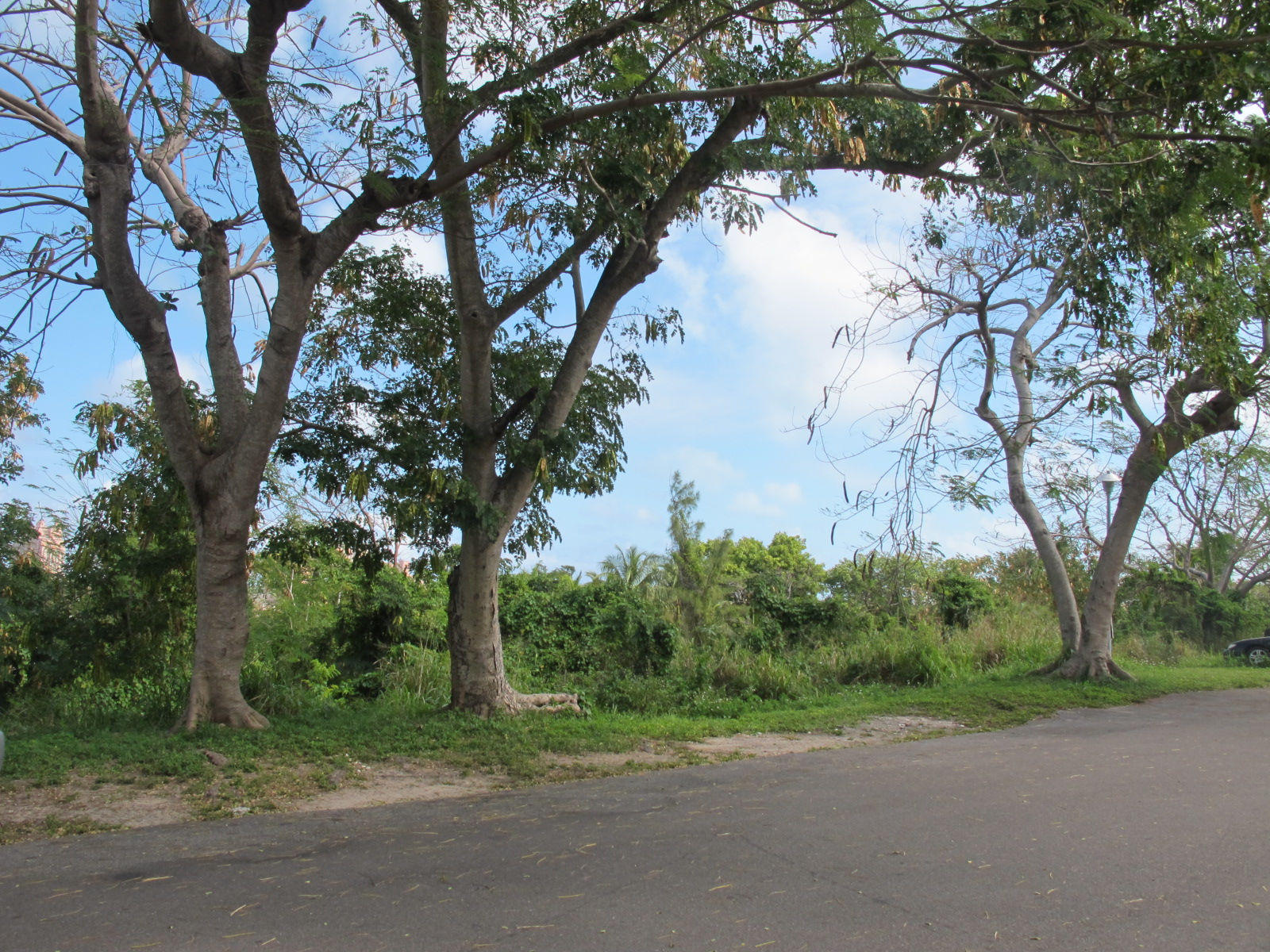 Additional photo for property listing at Prime Commercial Land for Sale in Central Location - MLS 32573 Centreville, Nassau And Paradise Island, Bahamas