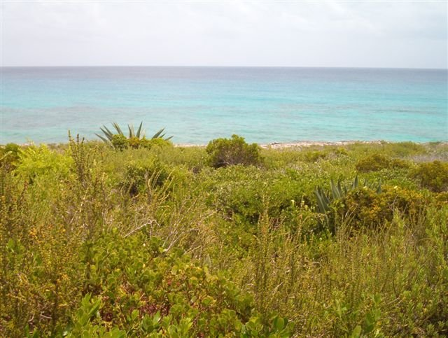 Additional photo for property listing at Eleuthera Waterfront Acreage Eleuthera, Μπαχαμεσ