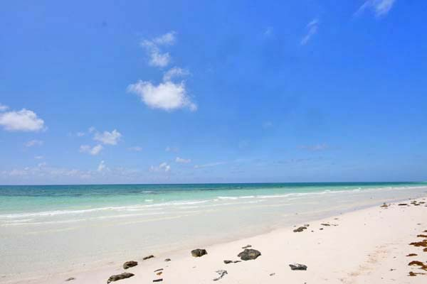 Additional photo for property listing at 32 acres of beautiful beachfront just west of Pelican Point Grand Bahama And Vicinity
