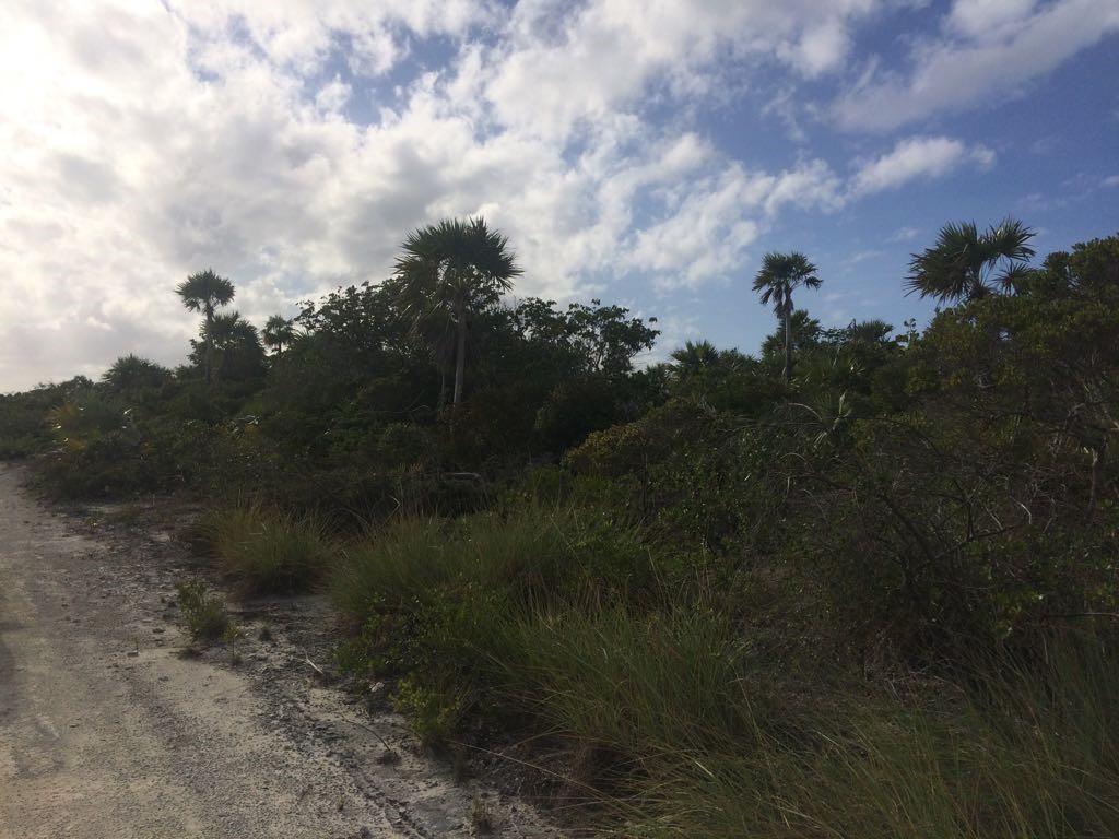 Additional photo for property listing at Hawk's Nest, Cat Island - MLS 32450 Hawks Nest, Cat Island, Bahamas