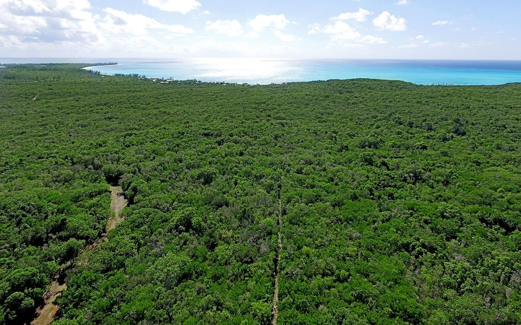 Additional photo for property listing at Hill Top Village 26.1 acres, Solar & Wind powered Home - MLS 32064 Cat Island, Bahamas