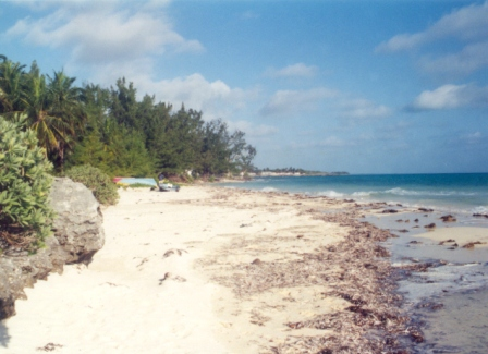 Additional photo for property listing at Kemps Bay Waterfront Property Andros, 巴哈馬