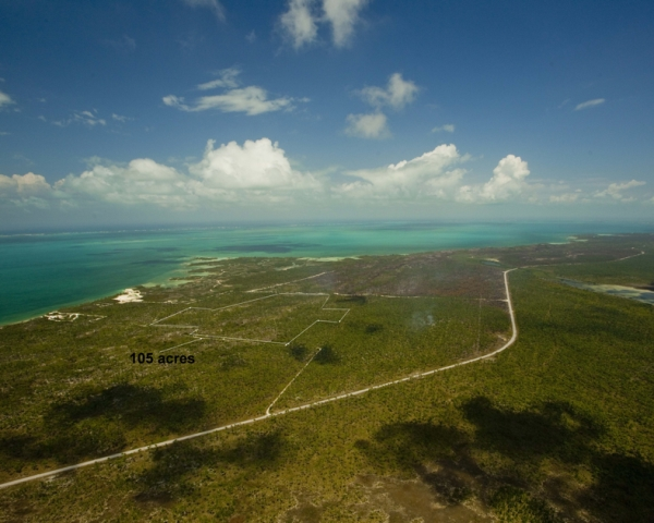 Additional photo for property listing at Red Bay Open Zoned Property Abaco, Bahamas