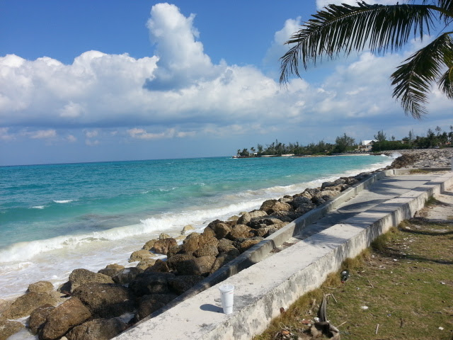 Additional photo for property listing at Prime Ocean View Acreage with 200 Feet on West Bay Street Bahamas