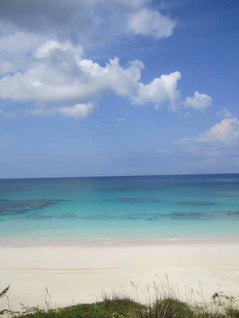 Additional photo for property listing at Fabulous Investment Acreage, Central Eleuthera Eleuthera, Μπαχαμεσ