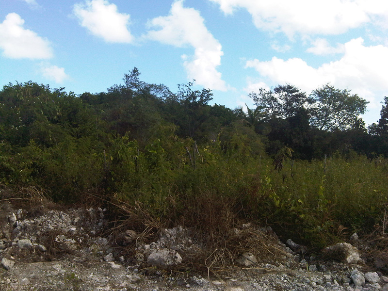 Additional photo for property listing at Double Commercial Lot Prince Charles Drive - MLS 27754 Nassau New Providence And Vicinity
