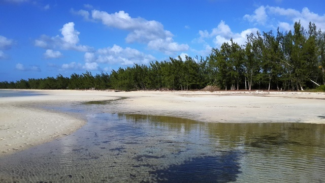 Additional photo for property listing at Development Acreage Ten Bay Paddlebaorders dream MLS 25104 Eleuthera, 바하마
