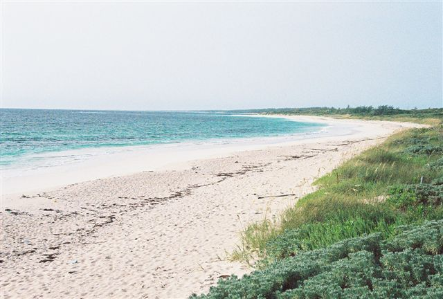 Additional photo for property listing at Open Zoned Beachfront Investment Property Eleuthera, Багамские Острова
