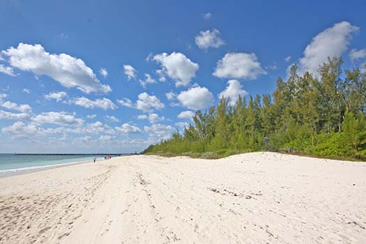 Additional photo for property listing at Prime Development Property on Lucayan Beach Grand Bahama And Vicinity