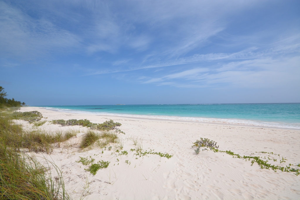 Additional photo for property listing at Mellow Yellow, Double Bay, Eleuthera  MLS 27217 Eleuthera, Bahamalar