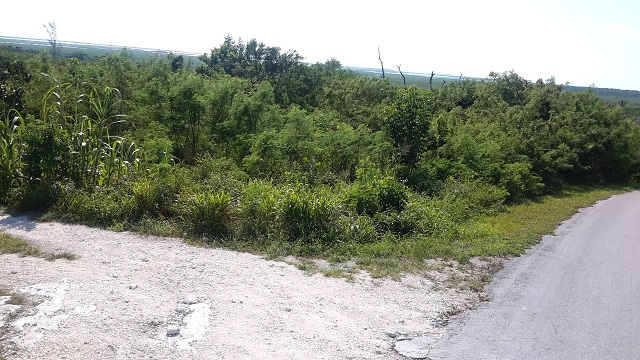 Additional photo for property listing at 180 Acres - Alexander, Exuma Exumas, 巴哈马