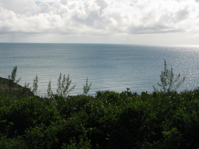 Additional photo for property listing at 44 Acres of Gorgeous Waterfront!!! Great Investment Opportunity!! Eleuthera, Bahama Eilanden
