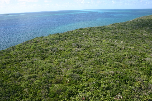 Additional photo for property listing at South Pimlico Private Island MLS 23014 Eleuthera, Μπαχαμεσ