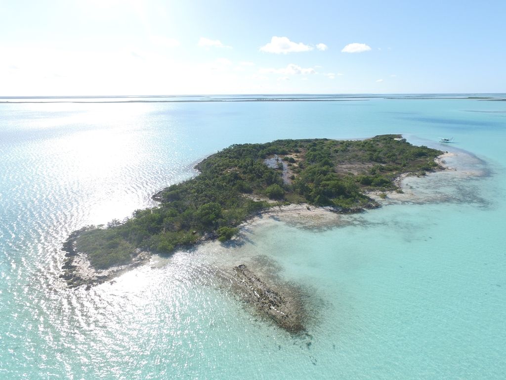 Additional photo for property listing at Pristine Setting Private Island - Great Price! MLS 31342 Andros, Bahamas