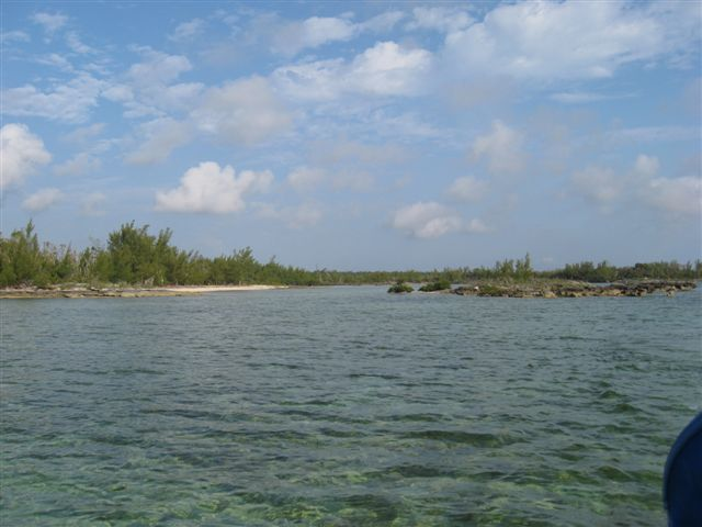 Additional photo for property listing at Well Priced Acreage In Close Proximity To Marsh Harbour 阿巴科, 巴哈马
