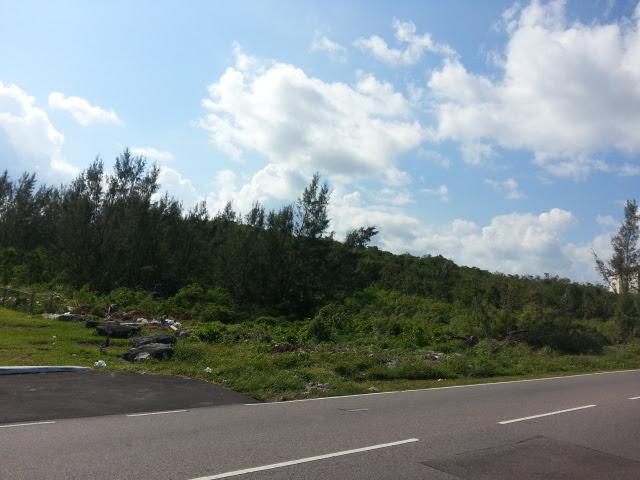 Additional photo for property listing at Prime Ocean View Acreage with 200 Feet on West Bay Street Bahamalar
