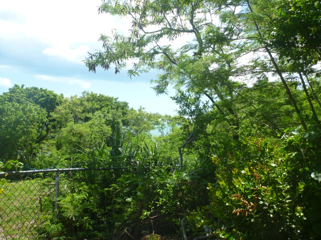 Additional photo for property listing at Waterfront Russel Island Eleuthera, 바하마