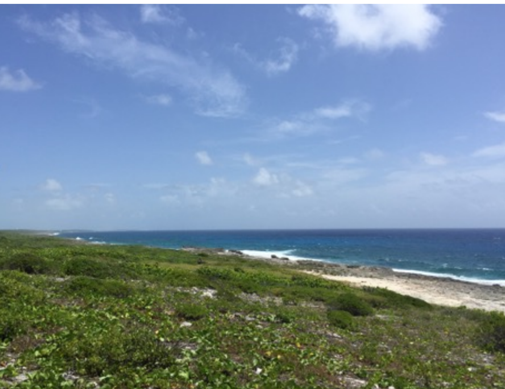Additional photo for property listing at Deadman's Cay Acreage - MLS 28893 Long Island, Bahamas
