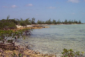 Additional photo for property listing at Blue Hole Cay Private Island, South Bight Andros, Μπαχαμεσ