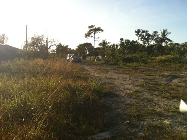 Additional photo for property listing at Large vacant land in the west バハマ
