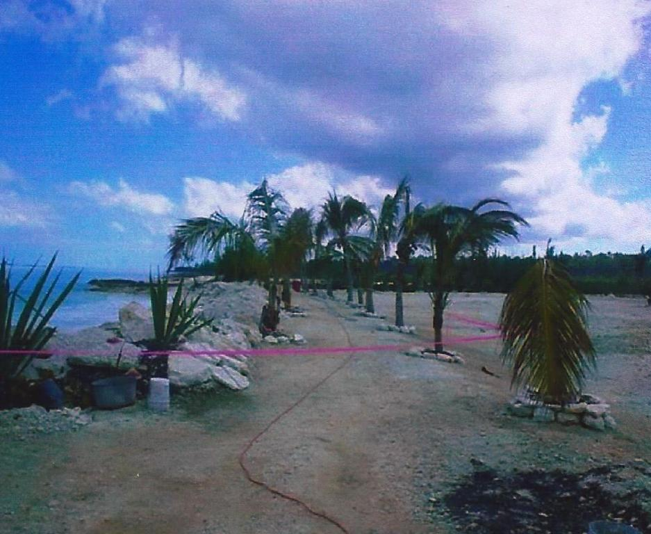 Additional photo for property listing at Prime Beachfront Acreage in Coopers Town, Abaco Abaco, Bahamas