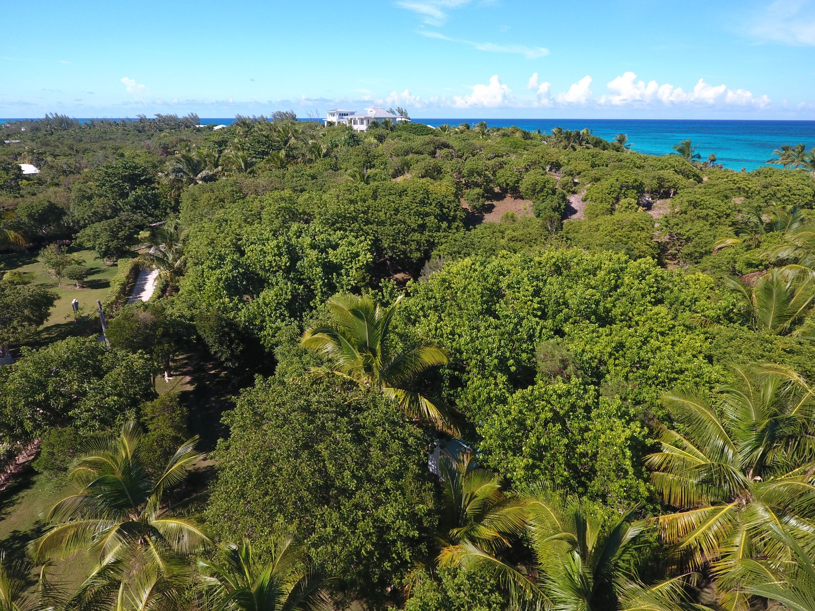 Additional photo for property listing at Chele's Cottage (MLS: 28019) Abaco, Bahama Eilanden