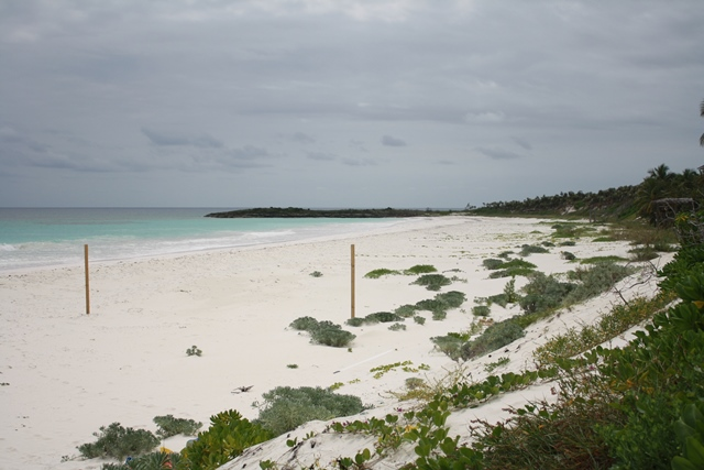Additional photo for property listing at Unique Homesite Collection at Windermere - Section A, Lot 8 and 125 or 9 and 126 Eleuthera, 바하마