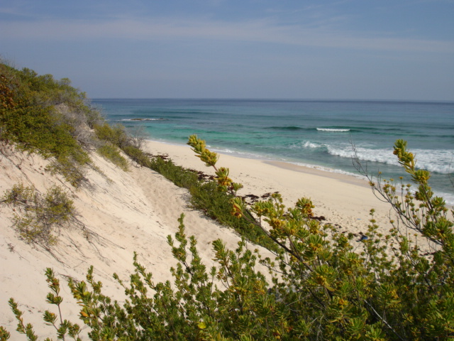 Additional photo for property listing at Lot with utilities near Surfer's Beach Eleuthera, Bahamas
