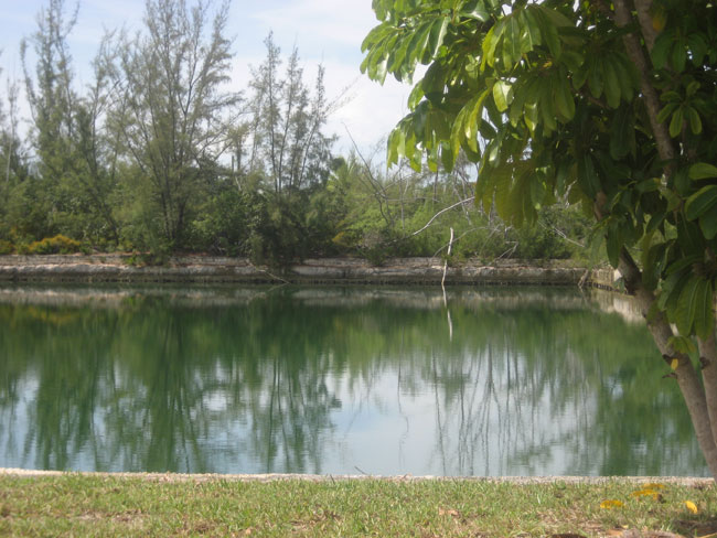 Additional photo for property listing at An Island Within An Island: A Developer's Dream Bahamalar